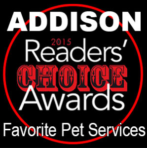 2015 Best of Addison Reader's Choice Award for Best Pet Services